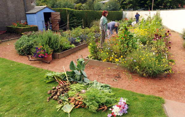 Gardening raised beds